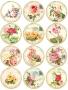 Принт декорация - Домът на розите - 12 бр