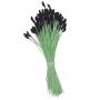 Комплект тичинки за цветя - Лилиум, черни - 144 бр