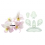 Комплект резци - Сингапурска орхидея - 5 бр