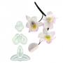 Комплект резци - Сингапурска орхидея, малка - 3 бр