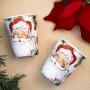 Парти чаши - Botanical Santa - Дядо Коледа