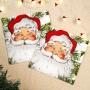 Парти Салфетки - Botanical Santa - Дядо Коледа
